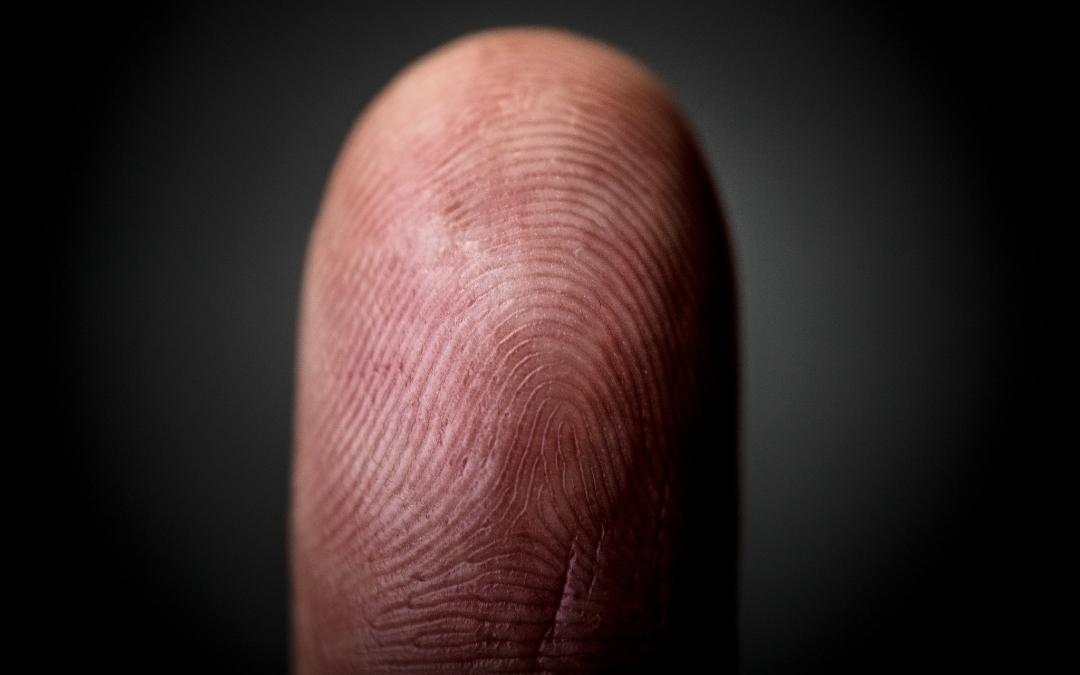 Cámara de Diputados aprueba dictamen en comisiones para considerar datos biométricos como datos personales sensibles