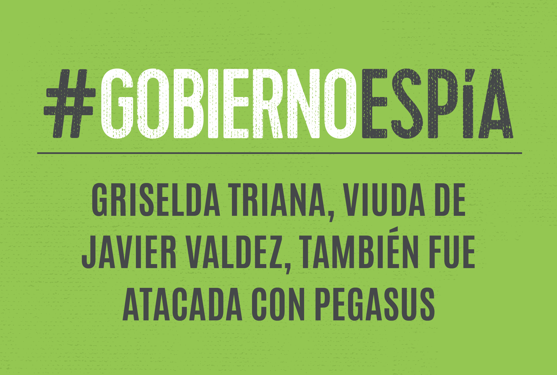 """""""No soy criminal ni terrorista, pero fui espiada"""": Griselda Triana, viuda de Javier Valdez, fue atacada con Pegasus"""