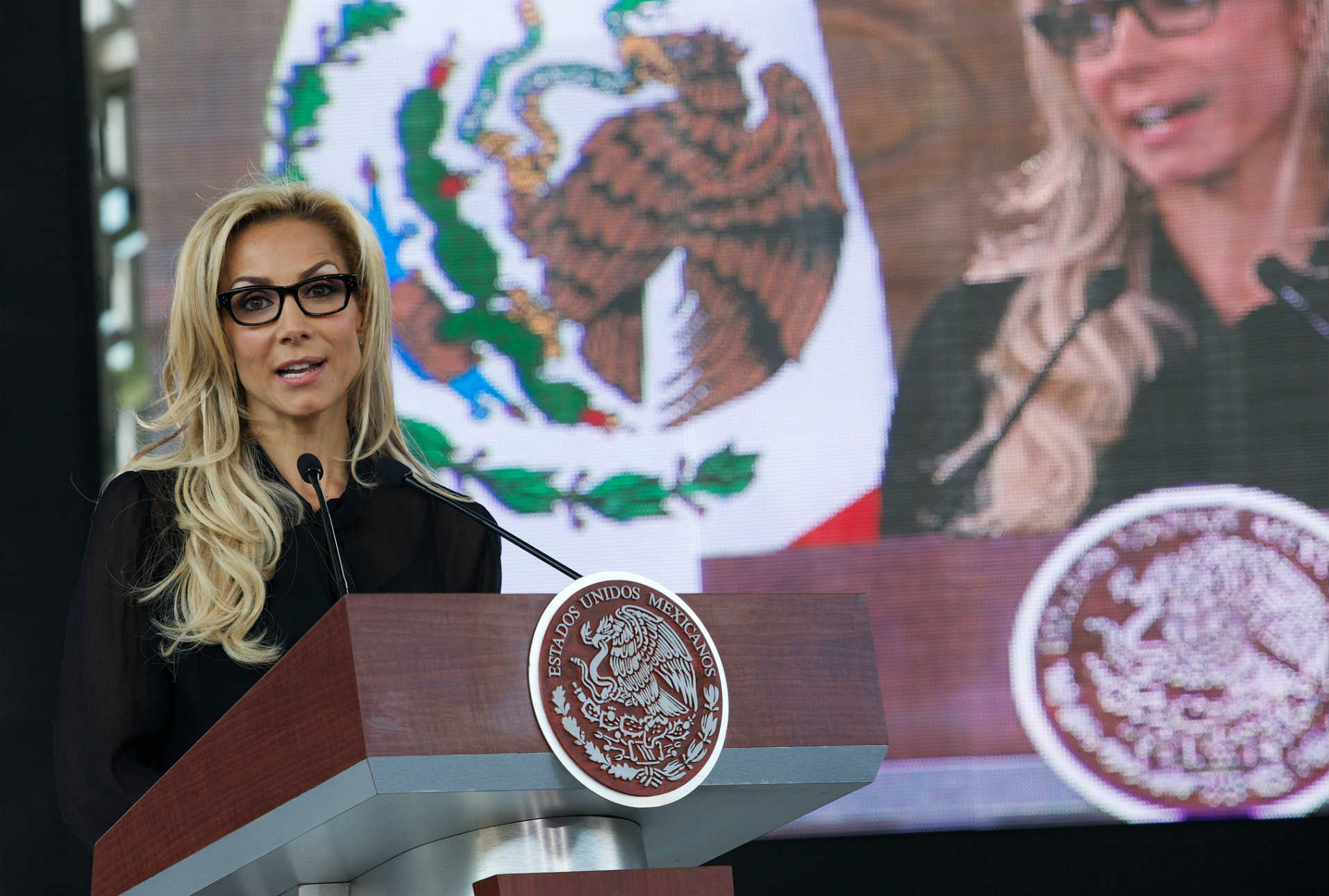 Pese a evidencia, coordinadora de la EDN desconoce compras de software de espionaje en México